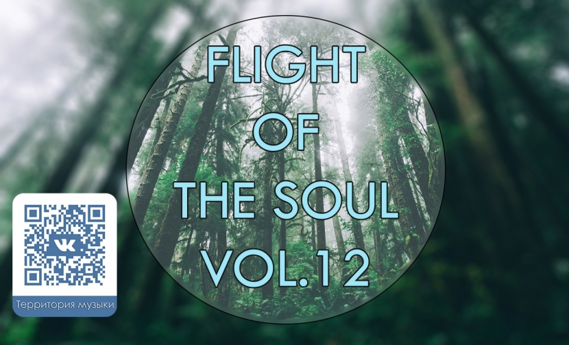 FLIGHT OF THE SOUL VOL.12