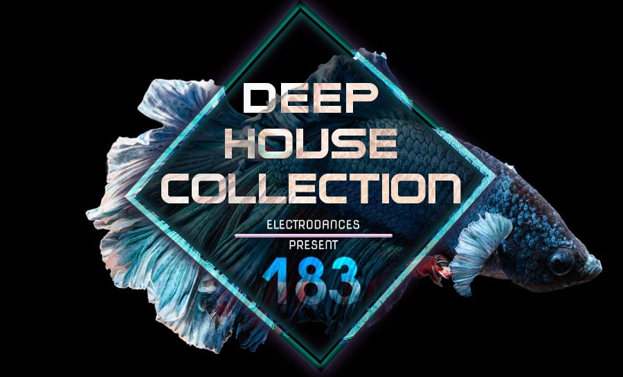 DEEP HOUSE COLLECTION VOL.183