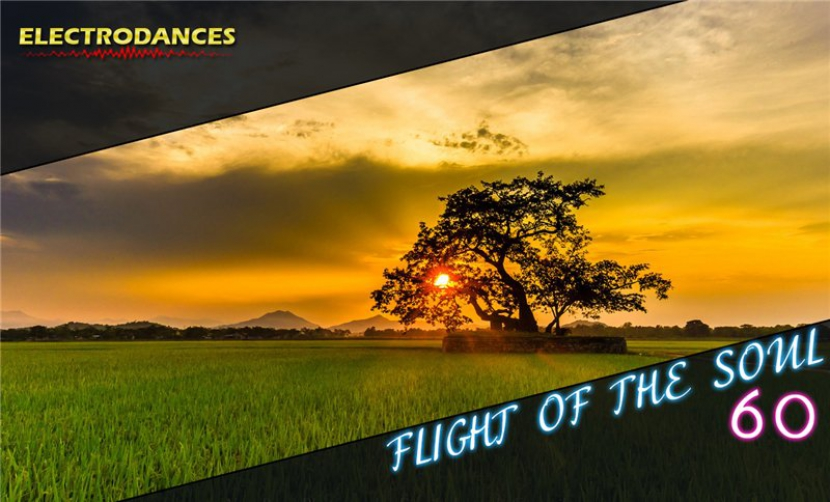 FLIGHT OF THE SOUL VOL.60